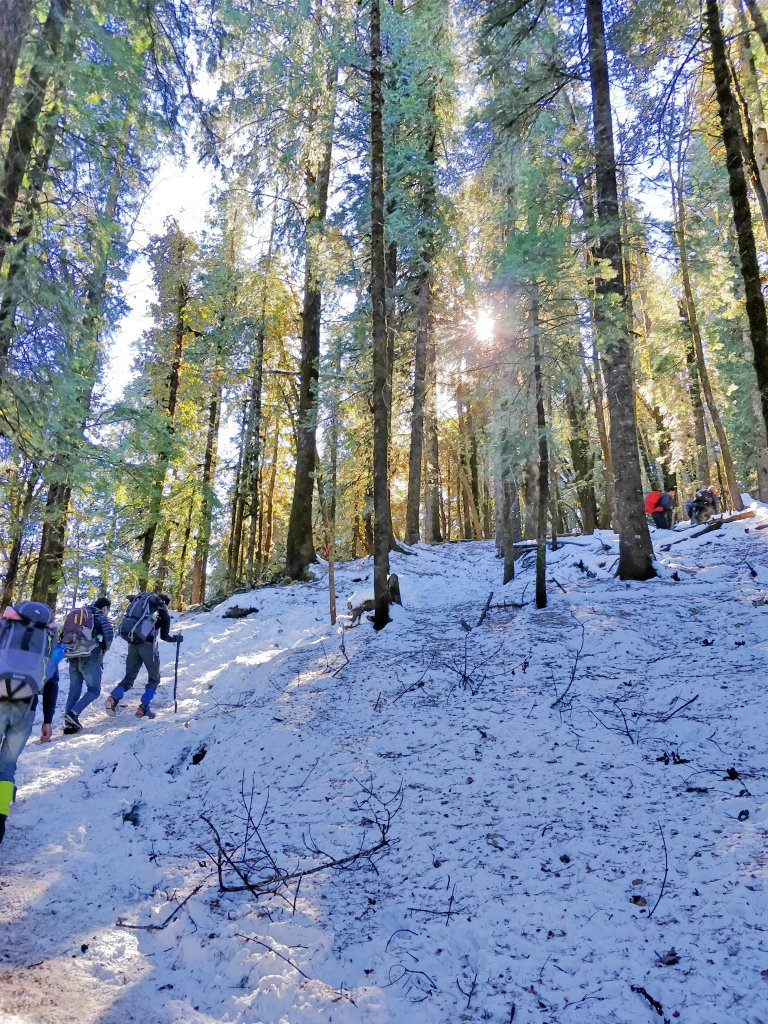 best trekking destinations in India